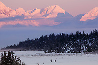 winter landscape of snow covered Chugach Mountains   above Turnagain Arm with meadow at Turnagain Pass area  and cross country skiers January 2014