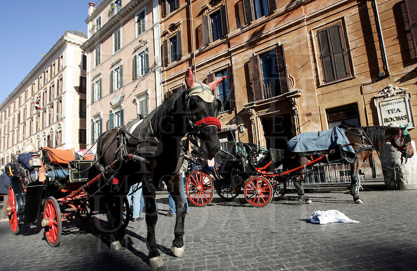 "Un cavallo traina una botticella in piazza di Spagna, Roma, 13 dicembre 2010..A horse drawing a typical ""botticella"", carriage, is seen in Spain's Square, Rome, 13 December 2010..© UPDATE IMAGES PRESS/Riccardo De Luca"