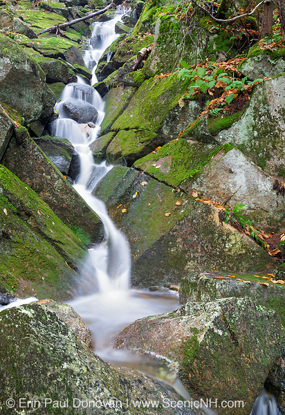 Cascade on Porcupine Brook, a tributary of Lost River, in Kinsman Notch of Woodstock, New Hampshire USA during the autumn months.