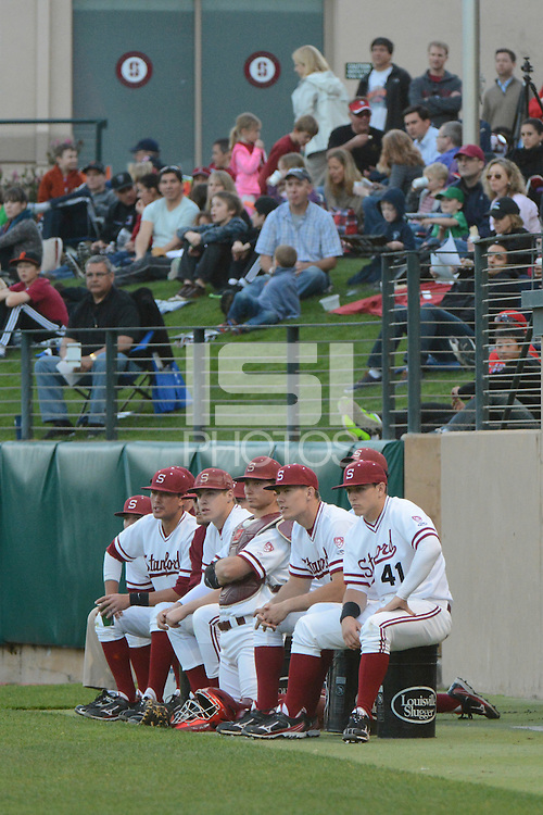 Stanford, CA - Friday, March 1, 2013: Stanford Cardinal team sits in front of fans during the NCAA baseball game against the Texas Longhorns.