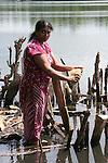 lavorazione fibra del cocco