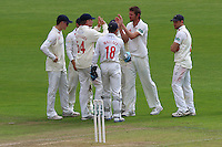 Michael Hogan of Glamorgan is congratulated by his team mates after taking the wicket of Tom Westley during Glamorgan CCC vs Essex CCC, Specsavers County Championship Division 2 Cricket at the SSE SWALEC Stadium on 23rd May 2016
