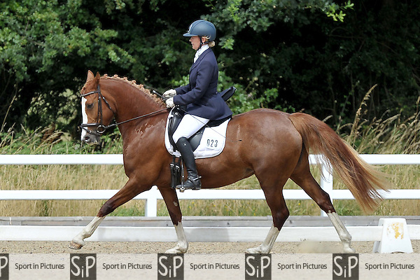 Class 3. British Dressage (BD). Brook Farm Training Centre. Essex. 29/07/2016. MANDATORY Credit Garry Bowden/Sportinpictures - NO UNAUTHORISED USE - 07837 394578