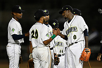 Tony Dibrell (8) of the Columbia Fireflies is congratulated by teammates, including Jose Brizuela (20), after being taken out of a game against the Charleston RiverDogs in which he set a Fireflies single-season strikeout record of 138 on Tuesday, August 28, 2018, at Spirit Communications Park in Columbia, South Carolina. Columbia won, 11-2. (Tom Priddy/Four Seam Images)