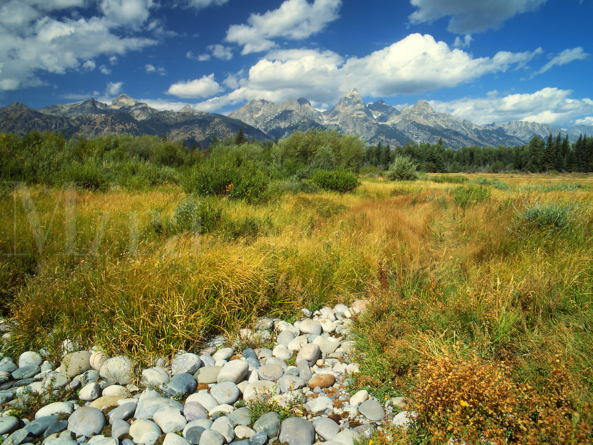 Art in Nature 9409-0102 - The Teton Mountain Range rises above a grassy meadow and a dry creek bed of river stones. Rocky Mountains, Wyoming.