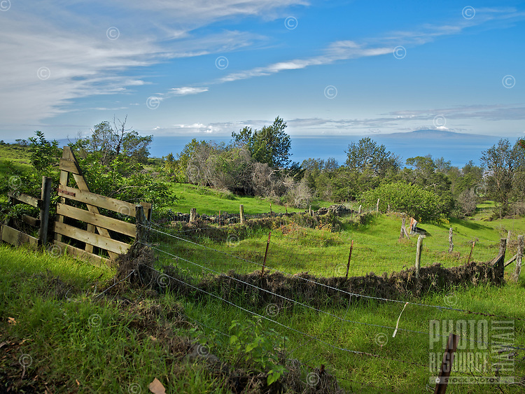 A green pasture holds wire fences, a wooden gate and old stone walls in Kula, Maui.