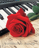 Interlitho, Alberto, VALENTINE, photos, red rose, piano, notes(KL15951,#V#)