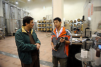Chris Ruffle talks with a young worker at winery of Treaty Port Vineyards in Penglai, Shandong province. 06-Nov-2010