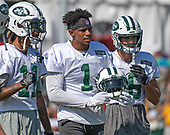 New York Jets wide receiver Terrelle Pryor (1), center watches practice with wide receiver Robby Anderson (11), left, and and wide receiver Chad Hansen (16), right, as they participate in a joint training camp practice with the Washington Redskins at the Washington Redskins Bon Secours Training Facility in Richmond, Virginia on Tuesday, August 14, 2018.<br /> Credit: Ron Sachs / CNP<br /> (RESTRICTION: NO New York or New Jersey Newspapers or newspapers within a 75 mile radius of New York City)
