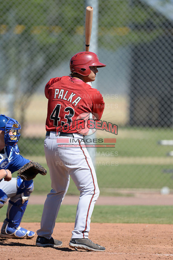 Arizona Diamondbacks first baseman Daniel Palka (43) during an Instructional League game against the Chicago Cubs on October 5, 2013 at Salt River Fields at Talking Stick in Scottsdale, Arizona.  (Mike Janes/Four Seam Images)