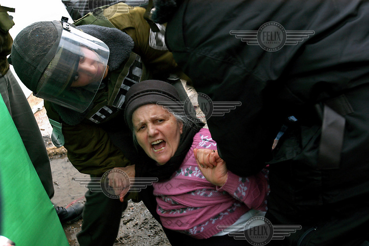 A Jewish settler woman is detained by Israeli security forces at the Avraham Avinu settlement in the Palestinian town of Hebron. Following a government decision to evacuate eight settler families from a compound they took over four years ago, many right wing Jewish youths had come to support them, hurling stones and burning Palestinian stores.
