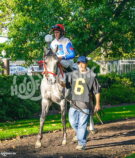 RB Fired Up before The Arabian Juvenile Championship (grade 3) at Delaware Park on 9/24/16