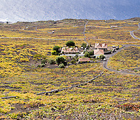 Grapevines grow on the black volcanic ground that was left by the eruption of the volcano San Antonio in the year 1677.