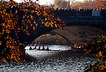 Boston, Cambridge, Massachusetts, Autumn, Rowing, Women rowers beneath the JF Kennedy - Anderson Street bridge, Head of the Charles Regatta,