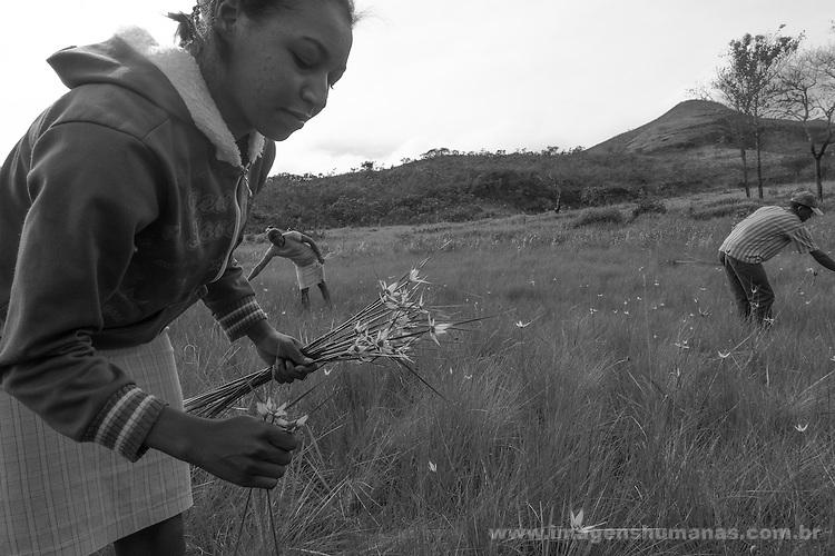 Popula&ccedil;&otilde;es Tradicionais de apanhadores de flores Sempre Vivas situada entre a Serra do Espinha&ccedil;o e a Serra do Cip&oacute;<br /> Popula&ccedil;&atilde;o de Raiz no munic&iacute;pio de Presidente Kubitschec vive da colheita de flores sempre viva em especial do capim dourado e do artesanato do capim dourado. S&atilde;o tamb&eacute;m agricultores e quilombolas reivindicando o reconhecimento do territ&oacute;rio. Est&atilde;o pressionados pela presen&ccedil;a de grilagem de eucaliptos que chegam as cercanias da comunidade.
