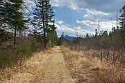 Old railroad bed in Bethlehem, New Hampshire during the spring months. This railroad bed was first used by the Gale River Railroad from 1874 to 1878, which was a logging railroad. It was then used by the Profile & Franconia Notch Railroad, which was in operation from 1879-1921, and only serviced the Profile House in Franconia Notch.