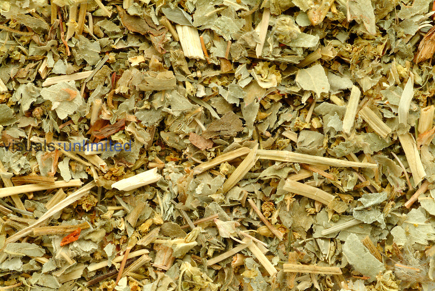 Alpine Lady's Mantle dried pieces (Alchemilla alpina)