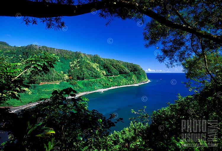 Clean lush famous road to Hana on the island of Maui