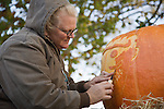 A woman from Nalls Farm Market carves a pumpkin at the 2008 Shenandoah Valley Hot Air Balloon and Wine Festival at Historic Long Branch in Millwood, Virginia.