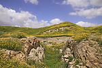 Israel, Southern Coastal Plain, the Canaanite gate at Tel Gezer
