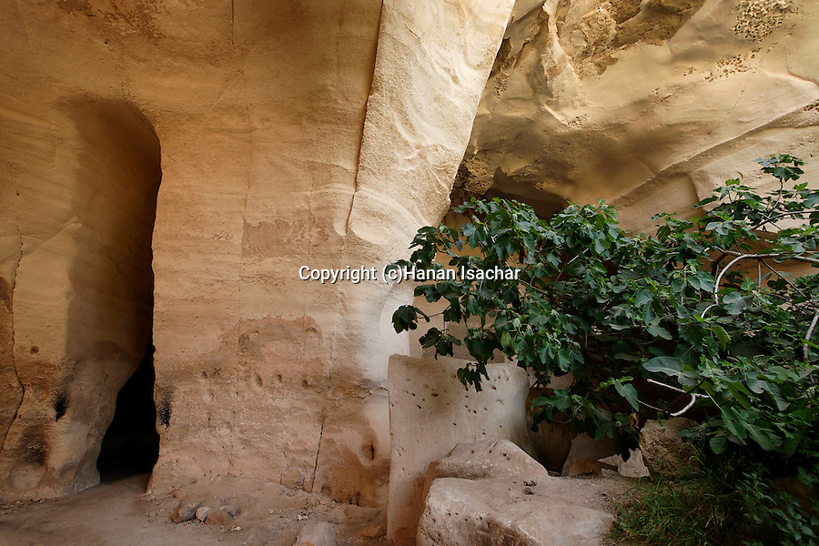 Israel, Luzit Caves in the Shephelah region