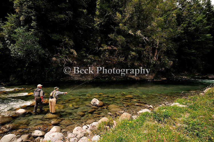 South Island New Zealand, small stream fly fishing