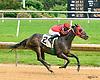 Old Upstart winning at Delaware Park on 6/8/17