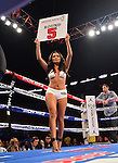 MIAMI, FL - JULY 10: General view of the ring girl during the Iron Mike Judgement Day boxing match at AmericanAirlines Arena on July 10, 2014 in Miami, Florida. Lubin defeated Bolanos by unanimous decision in eight rounds. (Photo by Johnny Louis/jlnphotography.com)