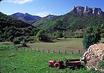 Pido in Asturias