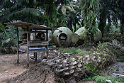 Barrels used for feeding the pigs sit on an abandoned pig farm in Nipah village in Nageri Sembilan, Malaysia on October 16th, 2016. <br /> In September 1998, a virus among pig farmers (associated with a high mortality rate) was first reported in the state of Perak in Malaysia. Dr. Chua investigated and discovered the virus and it was later named, Nipah Virus. The outbreak in Malaysia was controlled through the culling of &gt;1 million pigs.