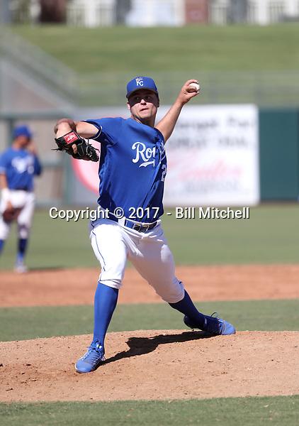 Daniel Tillo - 2017 AIL Royals (Bill Mitchell)