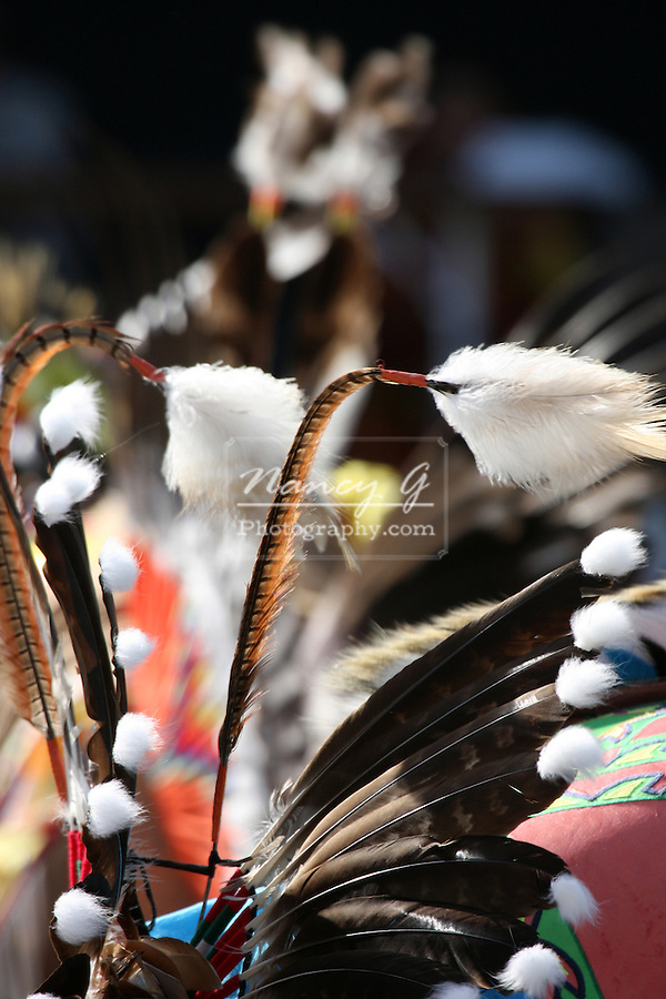 A Native American Indian feather outfit for dancing at a Pow Wow at the Milwaukee Lakefront Indian Summer Festival, Wisconsin