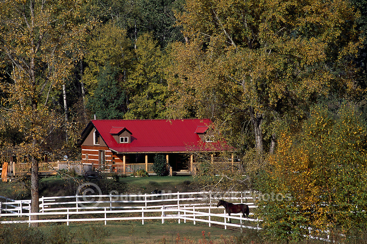 Log House, White Fence, and Horse in Corral, Northern BC, British Columbia, Canada, Summer