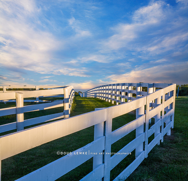 A Fence Line And Green Grass In The Evening During Summer In Horse Country, Lexington, Kentucky, USA