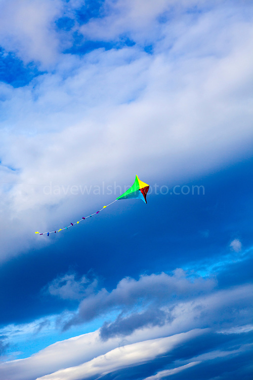 Flying a kite on Fermoyle Beach, on the Dingle Peninsula, Ireland,