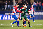 Daniel Ceballos Fernandez 'Dani Ceballos' (r) of Real Betis Balompie competes for the ball with Fernando Torres of Atletico de Madrid during their La Liga 2016-17 match between Atletico de Madrid vs Real Betis Balompie at the Vicente Calderon Stadium on 14 January 2017 in Madrid, Spain. Photo by Diego Gonzalez Souto / Power Sport Images