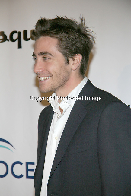 Jake Gyllenhaal<br />
