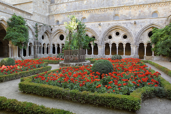 Cloister of Fontfroide Abbey or l'Abbaye Sainte-Marie de Fontfroide, Narbonne, Languedoc-Roussillon, France. Founded by the Viscount of Narbonne in 1093, Fontfroide linked to the Cistercian order in 1145. The original cloister was built 1180-1210 in Romanesque style, with double columns topped by foliage capitals supporting semicircular arches. The cloister was later altered in the 13th century after the Albigensian Crusade, when large tympanums were added above with oculi and pointed arches. The original wooden roof was also replaced with stone. The cloister was used by the monks for resting, walking, reading and studying in between religious duties. Picture by Manuel Cohen