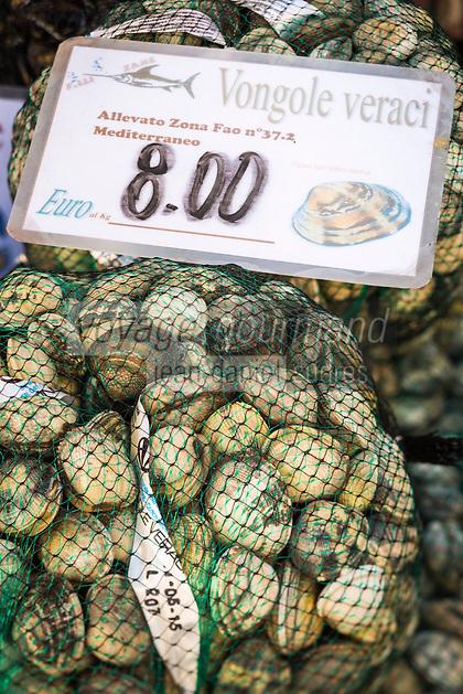 Italie, Vénétie, Venise:  Marché du Rialto, sestiere de San Polo -  La Pescheria , marché aux poissons / palourdes // Italy, Veneto, Venice:  Rialto market, San Polo sestiere: clams
