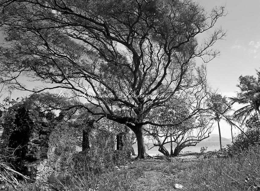 Denis Bay Ruins<br /> Virgin Islands National Park<br /> St. John<br /> U.S. Virgin Islands
