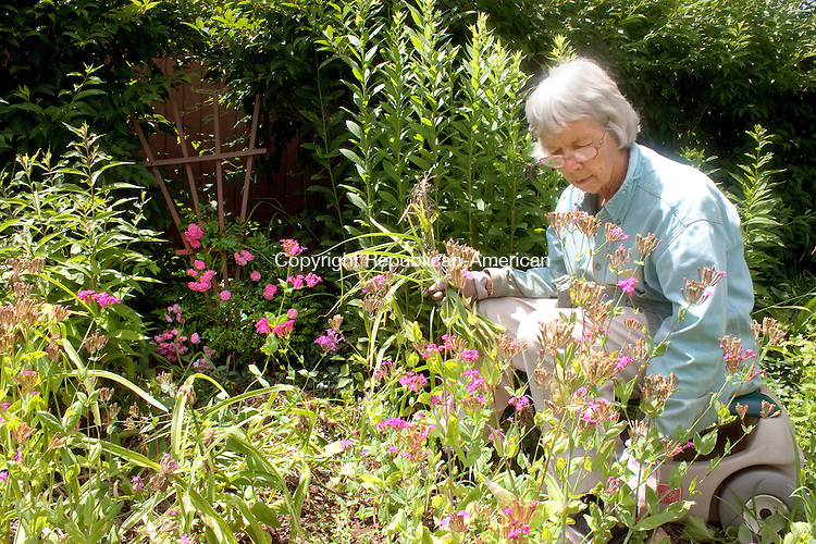 WATERBURY- JULY 10 2014 070914DA09- Fern Hungerford of Bethlehem says she enjoys working in her garden but with the heat and humidity on Wednesday she said it just might curtail her weeding.<br /> Darlene Douty Republican American
