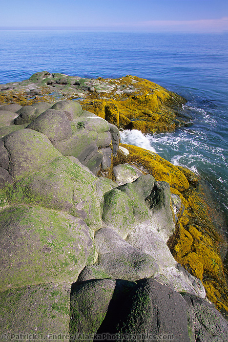 Volcanic rocky shore of St. Paul Island, Pribilof Islands, Bering Sea, Alaska