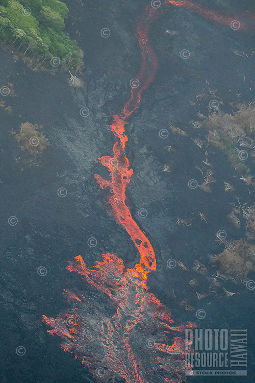 May 2018: An aerial view of an enormous lava river with albizia trees over 100 feet tall to its left, Puna district, Big Island of Hawai'i; the lava river originated in Leilani Estates in another part of Puna.