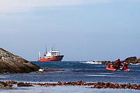 The Snares Islands, Antarctica