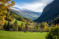Oesterreich, Kaernten, Nationalpark Hohe Tauern, bei Heiligenblut: Herbststimmung im oberen Moelltal | Austria, Carinthia, High Tauern National Park, near Heiligenblut: autumn scenery at Upper Moell Valley