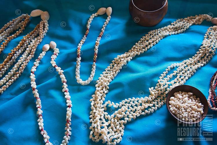 Niihau shell necklace display at the Kauai Museum