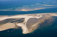Europe/France/Aquitaine/33/Gironde/Bassin d'Arcachon: le Banc d'Arguin et ses parcs à huitres - réserve naturelle - vue aérienne