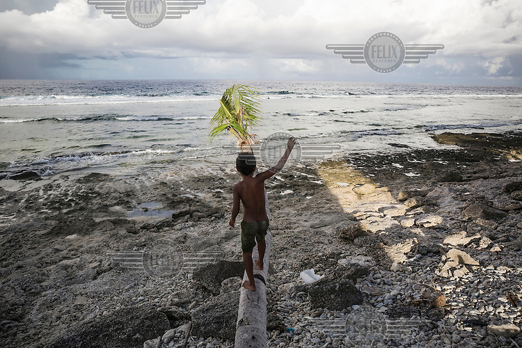A boy walks on a fallen palm tree in Teone village. Massive coastal erosion caused many coconut trees to fall down and the sea has eaten its way into the ground around the trees that are still standing.