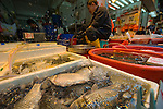 Hong Kong Fish Market