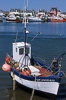 Europe/France/Bretagne/29/Finistère/Le Guilvinec: Le port de pêche